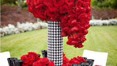 12 cung hoàng đạo nên tổ chức hôn lễ màu gì cho phù hợp? (P.2)